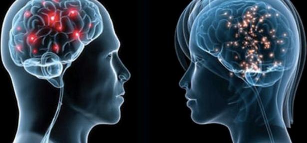 otak1